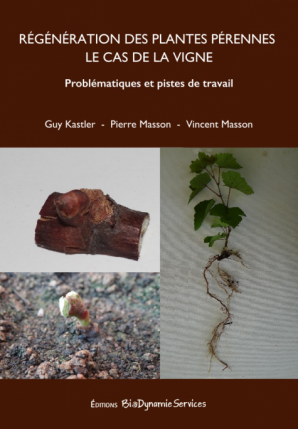 Nouvelle parution : régénération des plantes pérennes, le cas de la vigne.