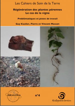 Ouvrage sur la régénération de la vigne et des plantes pérennes