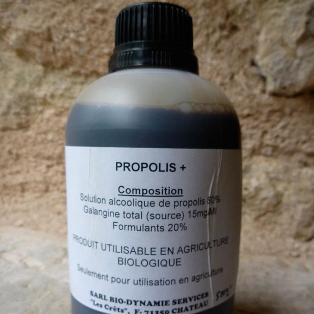 Propolis -